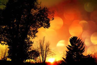 Sunset Glory by XxDarkbutterflyxX