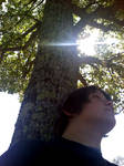 Rest under the Dogwood by CrimsonStrife