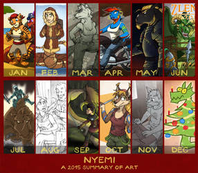 Summary of 2015 by nyemi