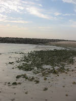 beach by mayah-stock