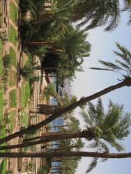 Jordan sightseeing by mayah-stock