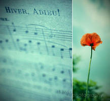 Hivers, Adieu by eulalievarenne