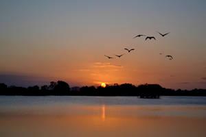 Murray Lagoon at Sunset by Psyfr34k