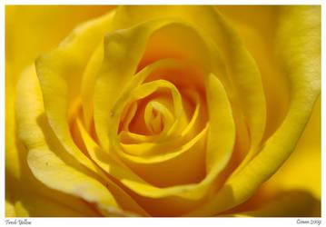 Fresh Yellow by CrazeeAce