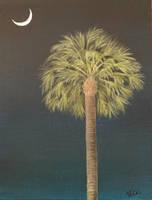 Palmetto Moonlight  by VKCole