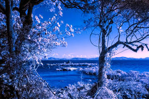 The Sacred Place IR by Questavia by Questavia