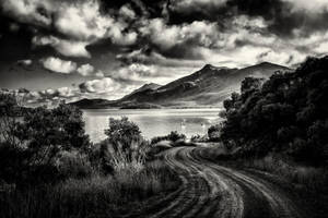Where The Road Leads BW by Questavia