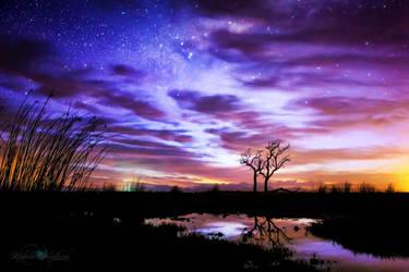 Dream Within A Dream by Questavia