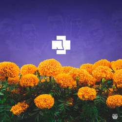 Herzeleid Custom Album Poster by LastSurvivorY2J