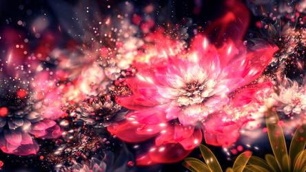 Innerbloom by SallySlips