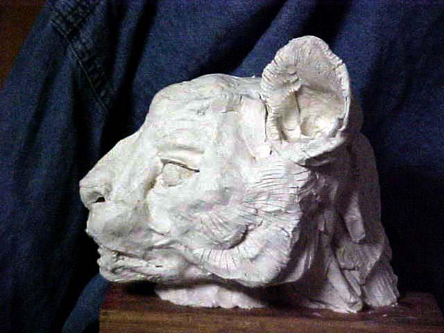 rathacat's Profile Picture