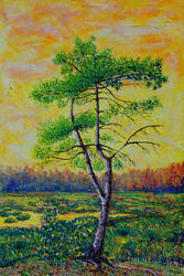 Pine Tree Over Indian Summer Marsh by mothandashes