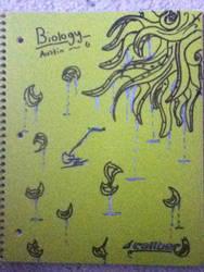 Biology Folder by darkaura019