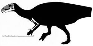 Skeletal restoration of Batyrosaurus rozhdestvensk by ornithischophilia