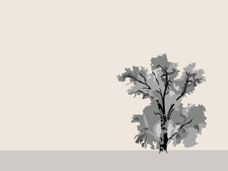 Solitude by papa-bear-jeffo
