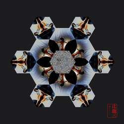 Special Snowflake #2 by madshutterbug