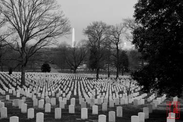 View of Washington From Arlington by madshutterbug