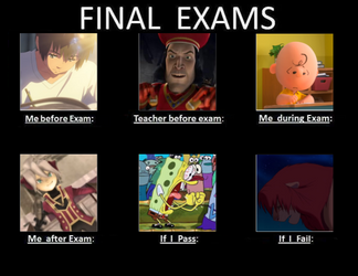 Final Exams Meme by Willy276