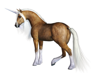 Unicorn 02 PNG Stock by Roy3D