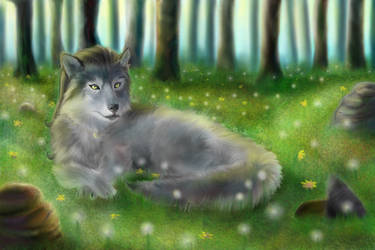 Wolf in the forest by TwoFaceBatman83