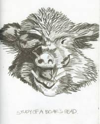 Boar by puckatdeviantart