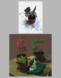 Digital painting - Plants by Reysaurus