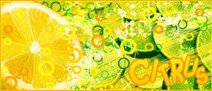 Citrus by kev2137