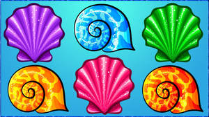 I see seashells... by kev2137