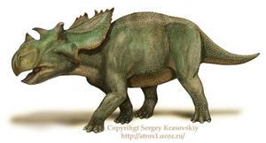 Utahceratops by atrox1