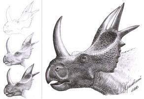 Rubeosaurus ovatus by atrox1