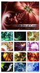 The Joy of Colors Calendar by ALP-Dreams