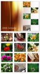 2008 Floral Calendar by ALP-Dreams