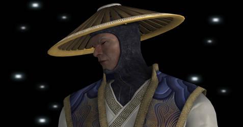 Sad Raiden by day-wing