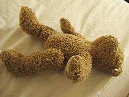 Teddy Bear by seraphunk