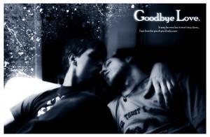 Goodbye Love - Mediagambit by dapride