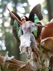 Fairy 1 - detail by CraigJohn