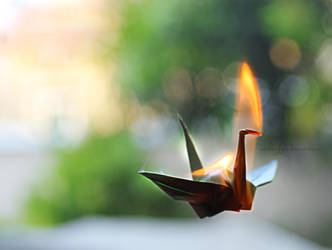 Crane Flame by catchingfyre