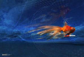 Goldfish by bodyycoo