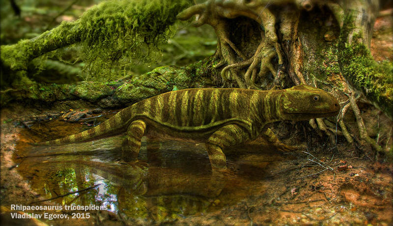 Rhipaeosaurus tricuspidens by AnthodonKR