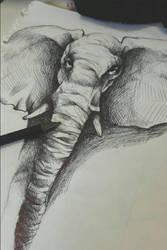 elephant sketch by Gnaaya