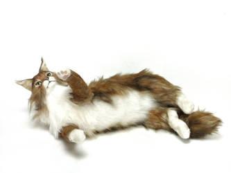 Realistic Maine coon cat ORANGINA by KALEideaSCOPE