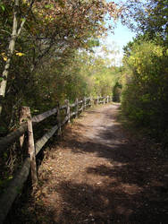 Long Island nature walk by shutterbugrunner