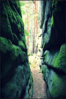Secret passage by IvyTinwe