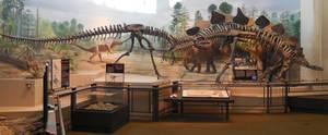 Allosaurus and Stegosaurus by LEXLOTHOR