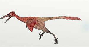 Buitreraptor gonzalezorum by Foolp69