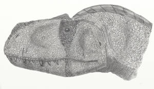Tete de Rajasaurus by Foolp69