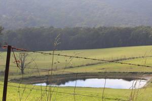 Countryside by Grayda
