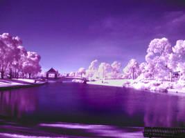 Lake in IR by Grayda