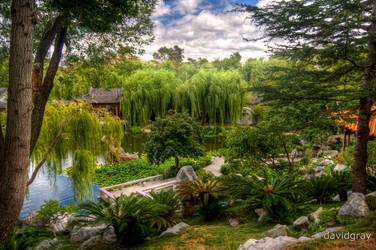 Garden of Friendship by Grayda