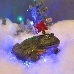Christmas Frog by Shiskababe